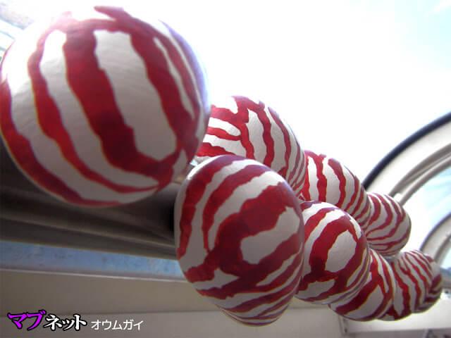 真紅のイナズマ【マブネット・オウムガイ】
