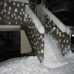 雪ダイオウグソクムシ侵入失敗【ダイオウグソクムシ雪像】雪だるま