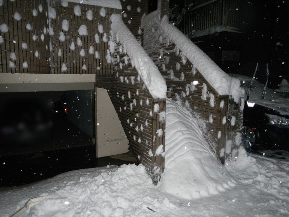 雪ダイオウグソクムシ侵入失敗
