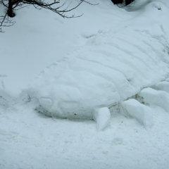 隔絶された母子【オオグソクムシ雪像】雪だるま