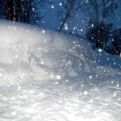 ニセコの雪壁でユノハナガニを掘り当てました【雪だるま】